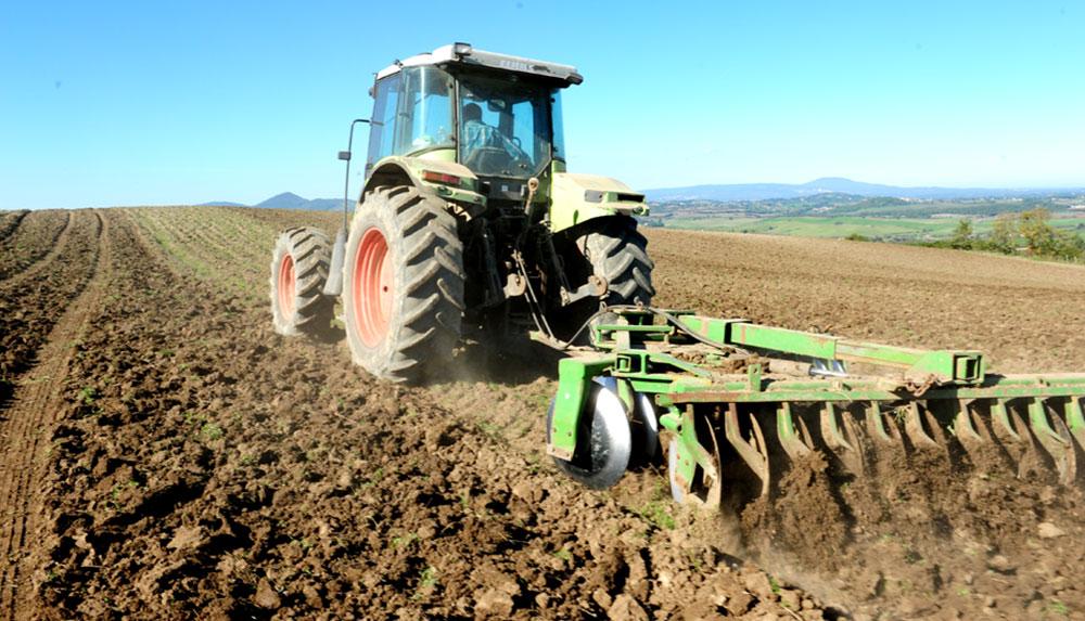 fattoria sociale semina orto estensivo casale martignano roma lazio