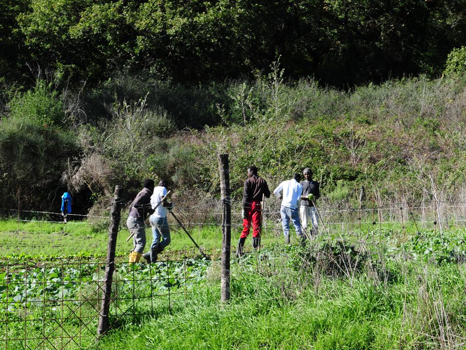 Puntata Linea Verde su Agricoltura Sociale