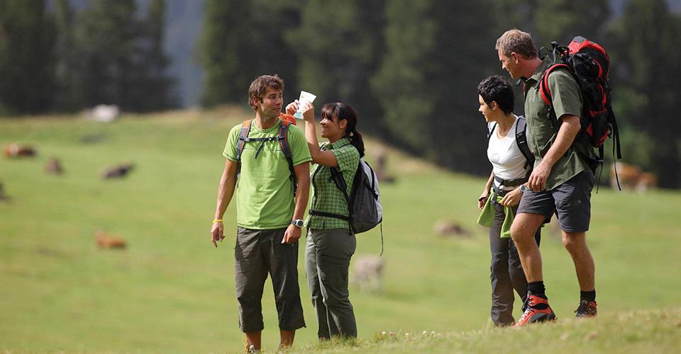 trekking presso l' agriturismo sul lago di martignano lazio