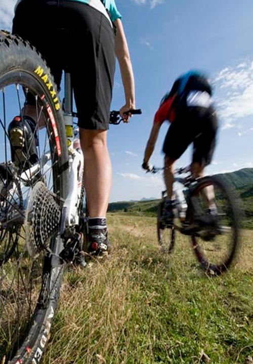 passeggiate in bicicletta mountain bike presso l'agriturismo casale di martignano roma