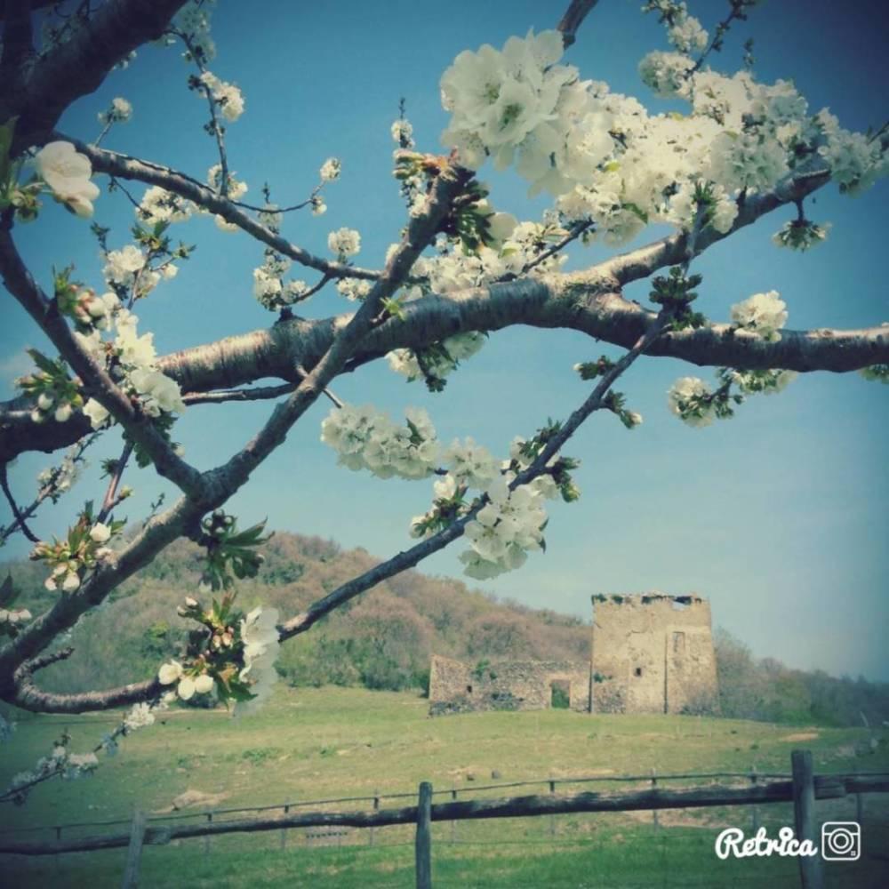 Pasqua e Pasquetta in Agriturismo